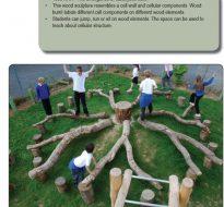 Franciscan Montessori Earth School – Nature Play Earth Path