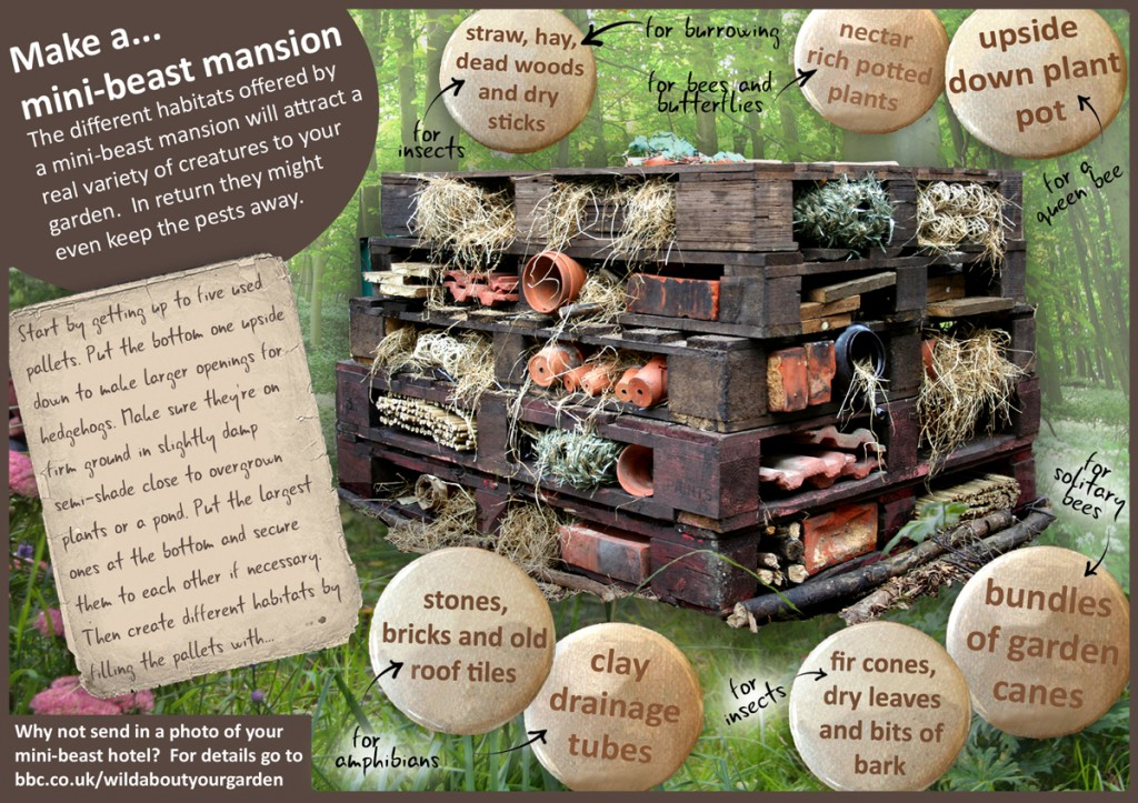 Insect hotels learning landscapes professional for How to start building a house
