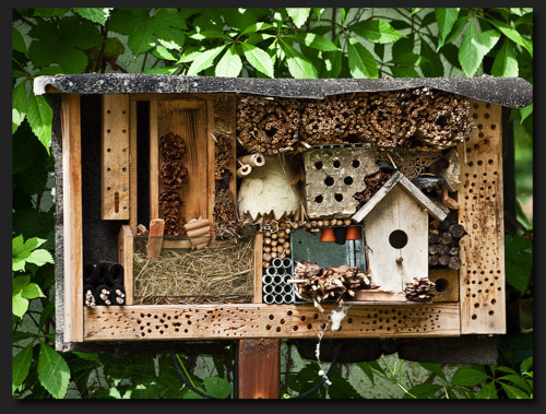 http://leafmag.tumblr.com/post/12969550229/insect-hotel-more-like-hotel-spa-and-restaurant