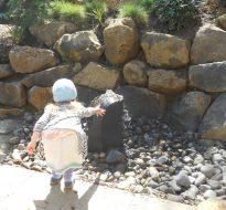 Pathfinder Academy – Nature Play Area