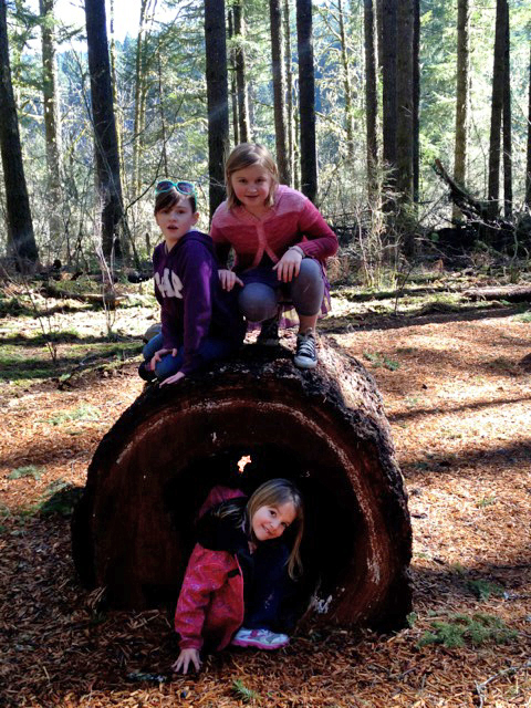 silverfalls_north_canyon_nature_play_learning_landscapes5