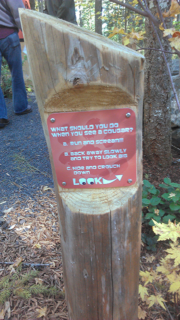 silverfalls_signs_learniglandscapes_sm