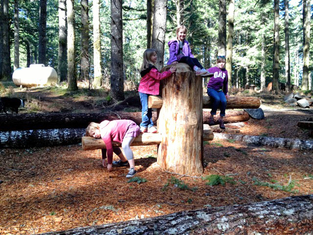 silverfalls_north_canyon_nature_play_learning_landscapes6