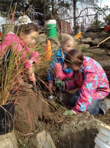 Opal school planting_Learning landsacpe Design